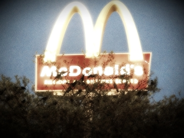 10 McDs and Birds