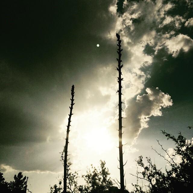 1 - Marfa Sky
