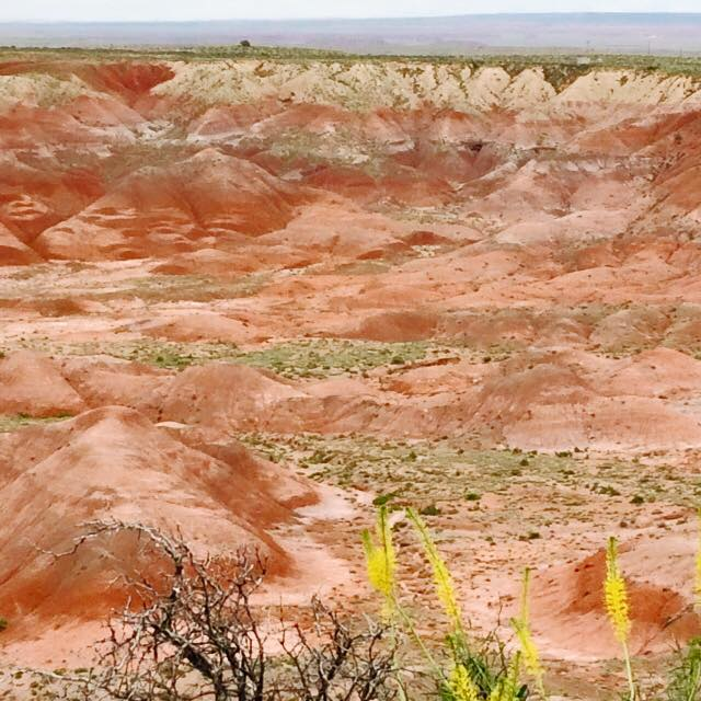 9 - Painted Desert National Park